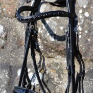 The outlaw dressage bridle.